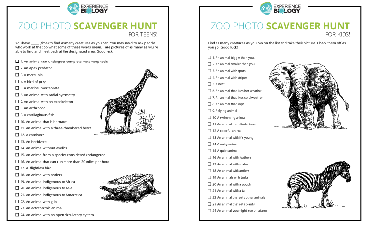 Zoo Photo Scavenger Hunt — for the whole family!