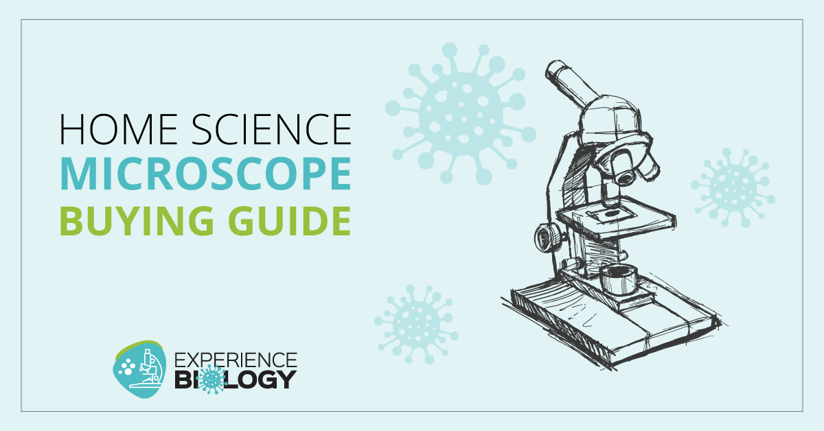 Home Science Microscope Buying Guide